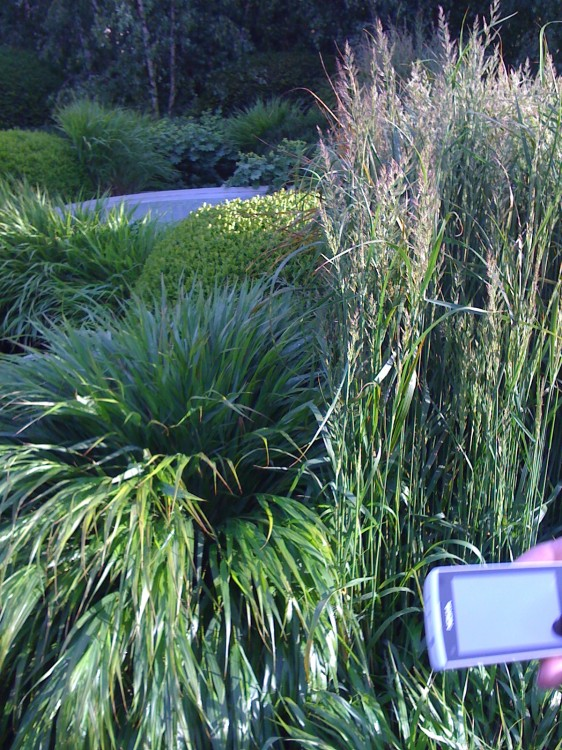 Stoops of Grass Well Used in 'Hanging Garden' at Chelsea