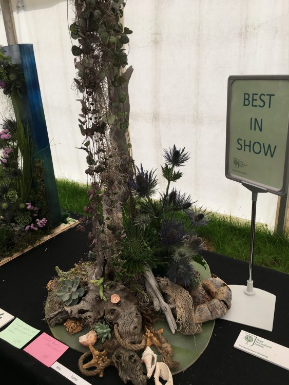 Best in Show: Hyde Hall Plant Fayre Flower Arranging Competish: Not Our World