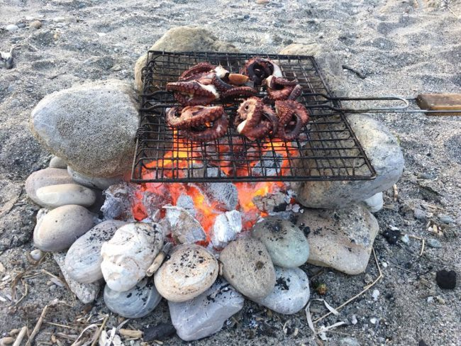 Beach Barbecue: the Actual Barbecue