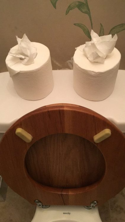 Lord Poulett Arms: Toilet Paper styling