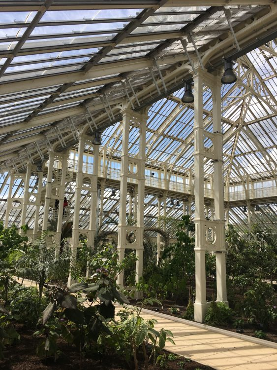Kew The Temperate House Opening: Yes, But what's It for?