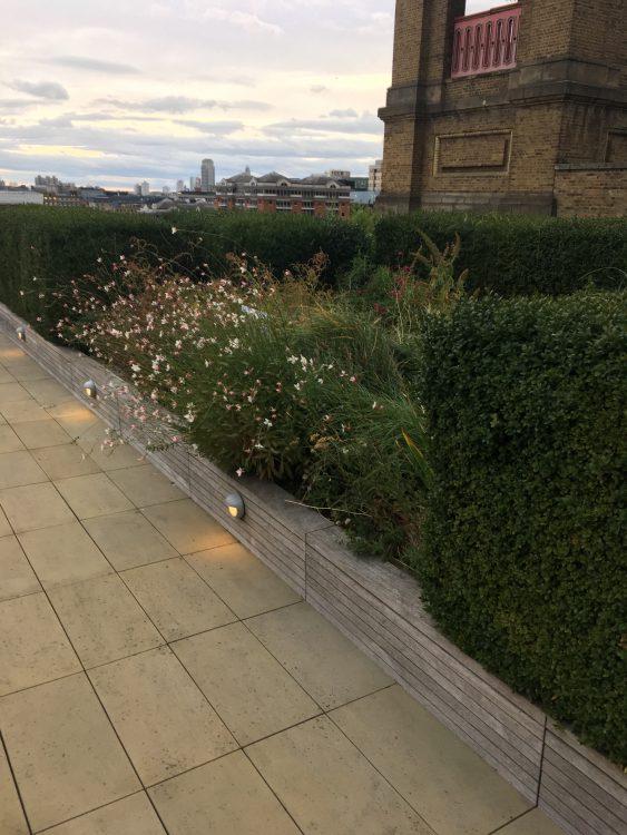 The Nomura Buidling: Roof Garden