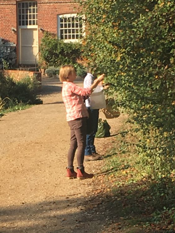 Berry-Picking Ladies at Flatford Mill