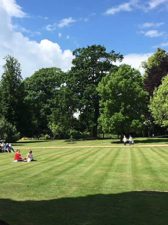 Lawns and Trees: Frogmore Landscape Gardens