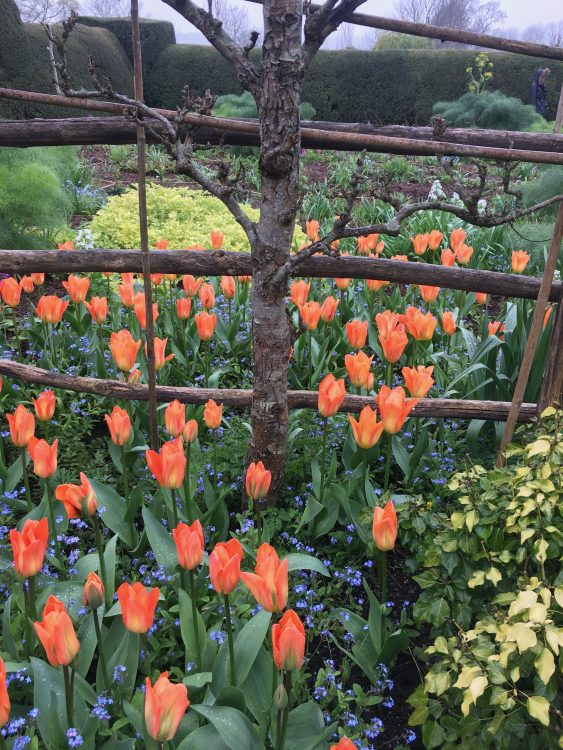 Dixter in the Spring