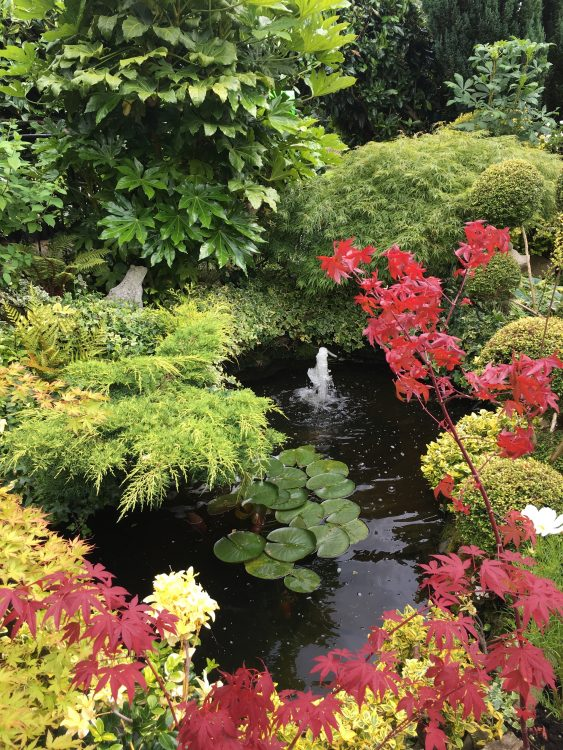 A Japanese Corner: Usk in Bloom