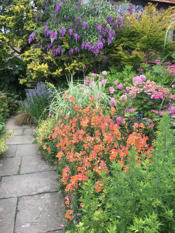 Oh Dixter - The Colours! Such Freedom