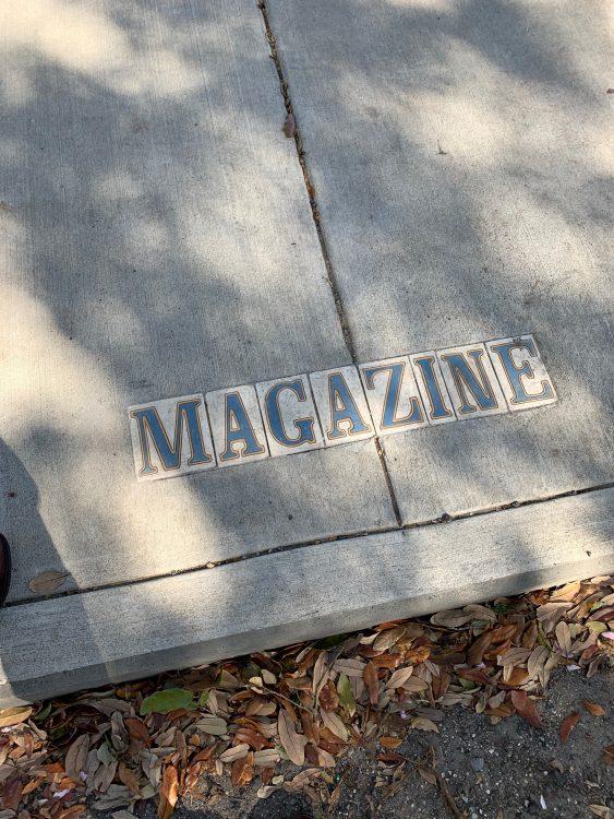 Walking Along Magazine towards the Mississippi