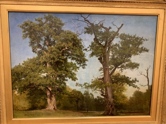 I Thought I was so Clever and this must be Same Artist as seen in Belvedere Vienna when Conducted by Reggie Cresswell. But it Isn't. Same Extraordinarly Intense Trees: This is Albert Bierstadt. Vienna one Was Waldmuller: See July 2015