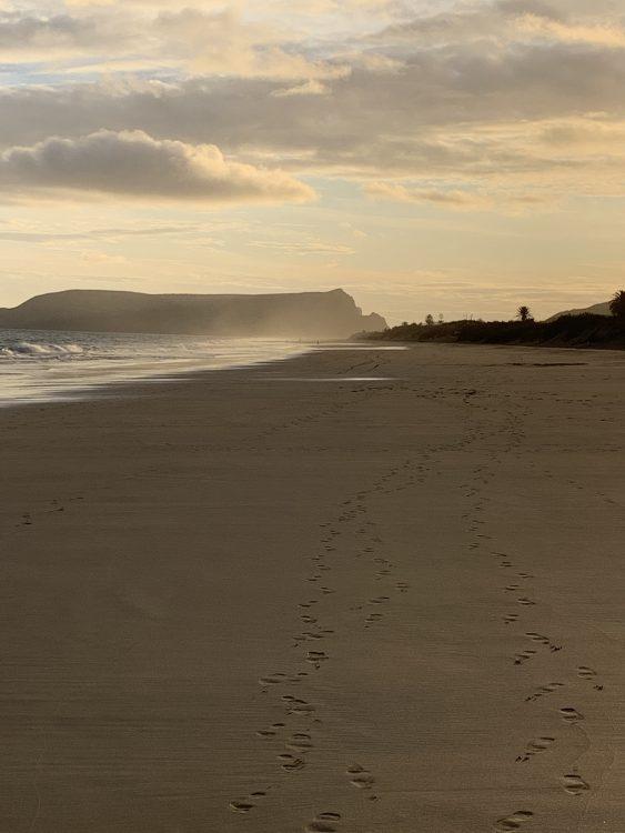 Beach: Porto Santo, off Madeira