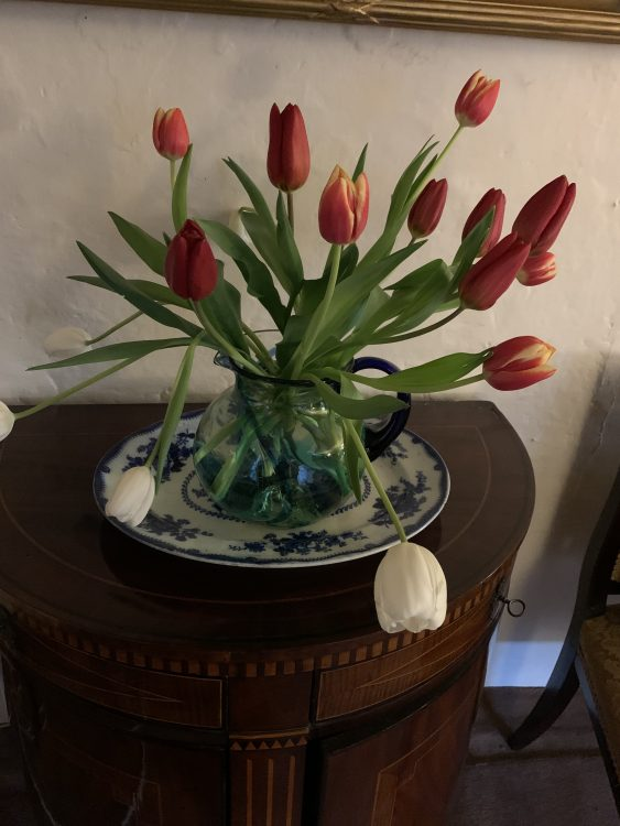Birthday Tulips Sent to the Gay Mother