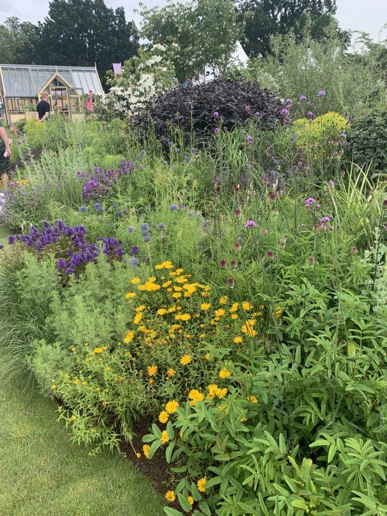 The Butterworth Garden, Hampton Court