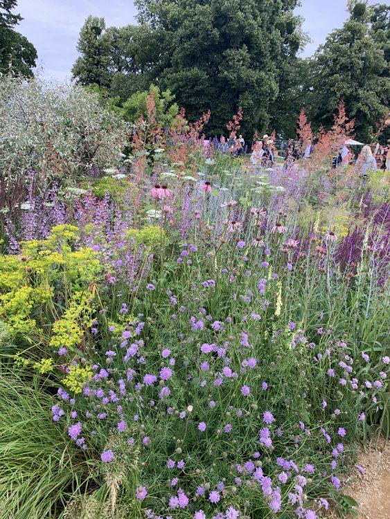 Tom Stuart-Smith Garden: Utter, utter Heaven