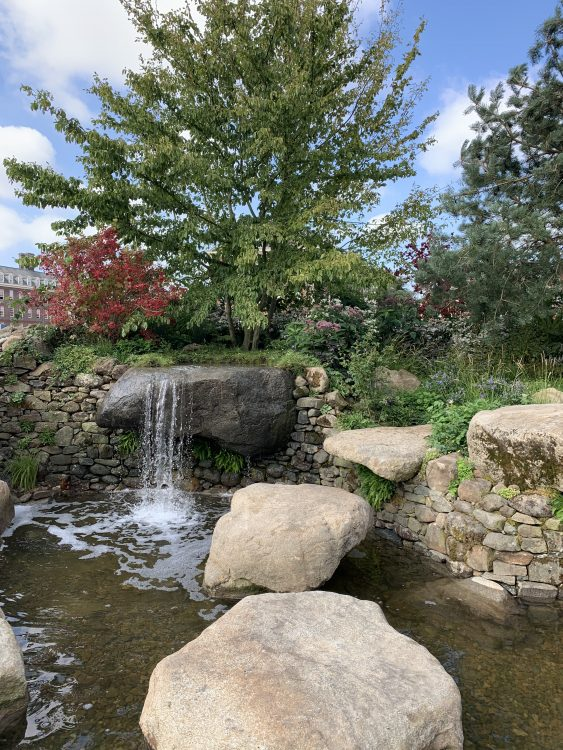 The Bible Society Psalm 23 Garden: I Lay Down by Still Waters