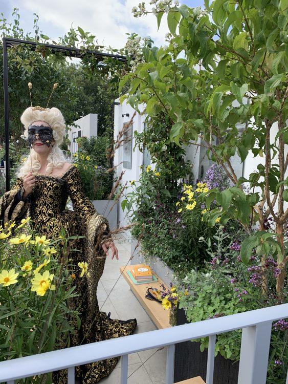 Queen Bee on a Balcony Garden